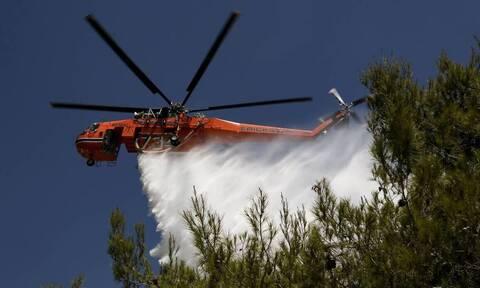 Εύβοια: Υπό έλεγχο η πυρκαγιά