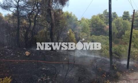 Βαρνάβας: Αυτή είναι η αιτία που προκάλεσε τη φωτιά (vids)