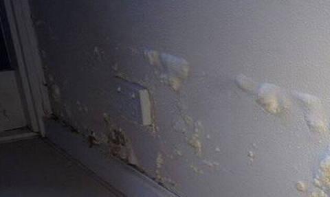 Μην αγχώνεσαι: Έτσι θα διώξεις τη μούχλα από τους τοίχους του σπιτιού σου!