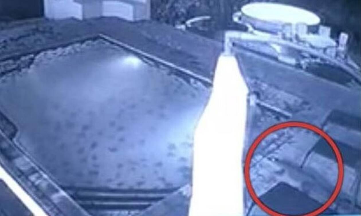 Κροκόδειλος επιτίθεται σε γυναίκα μέσα σε πισίνα! Συγκλονιστικό βίντεο