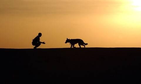 Σοκ: Έχασε τον σκύλο της - Ούρλιαζε από τρόμο όταν τον βρήκε