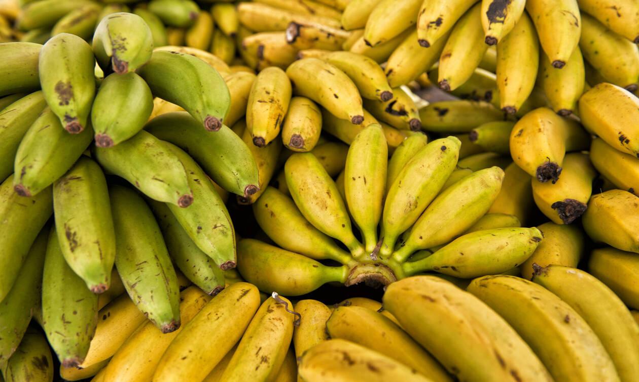 Ξέρετε τι θα συμβεί στον οργανισμό σας με μια μπανάνα την ημέρα; (Video)