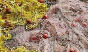 Τρόμος για Έλληνα ψαρά: Φονικά ψάρια στα δίχτυα του – Δείτε τι έβγαλε (pics)