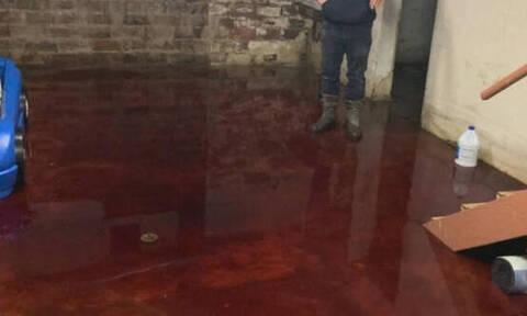Έζησαν τον απόλυτο τρόμο: Βρήκαν το υπόγειό τους πλημμυρισμένο με... αίμα