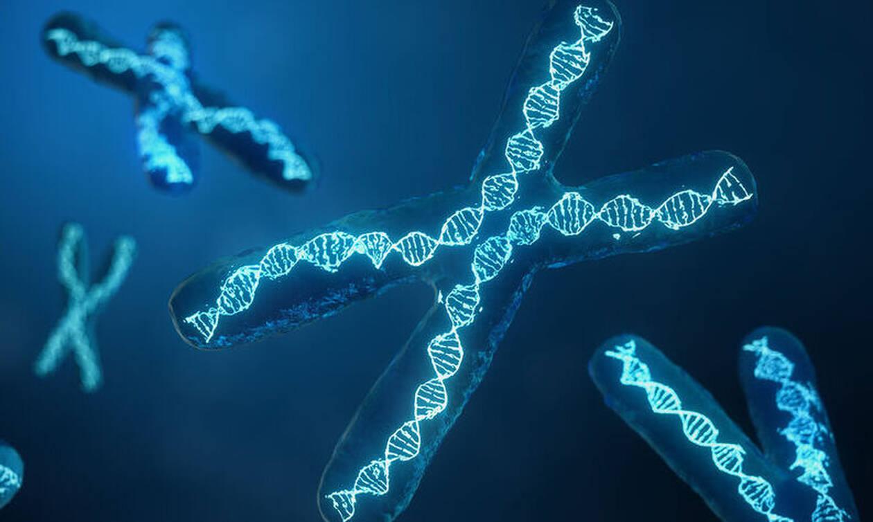 Νέα τεχνική τροποποίηση γονιδιώματος ανακάλυψαν οι επιστήμονες (έρευνα)