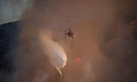 Φωτιά ΤΩΡΑ στα Άγραφα - Μεγάλη πυροσβεστική δύναμη μάχεται με τις φλόγες