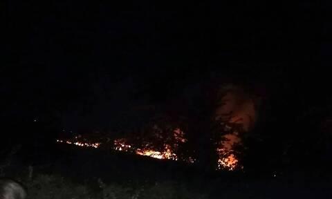 Φωτιά ΤΩΡΑ: Μεγάλη πυρκαγιά στα Τρίκαλα - Απειλείται κτηνοτροφική μονάδα