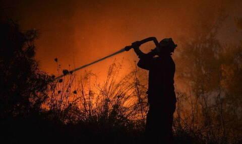 Φωτιά στην Αρκαδία: Καλύτερη η εικόνα της πυρκαγιάς – Παραμένουν οι δυνάμεις της Πυροσβεστικής