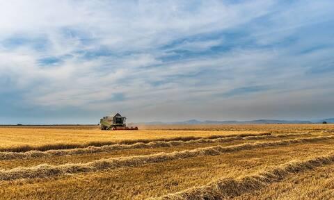 Χαμηλότοκα δάνεια άνω των 10.000 ευρώ σε αγρότες