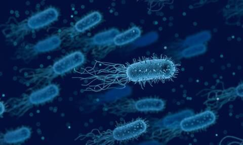 Εφιάλτης: Ασθένεια μετατρέπει σε ζόμπι 32χρονο (ΠΡΟΣΟΧΗ: ΣΚΛΗΡΕΣ ΕΙΚΟΝΕΣ)