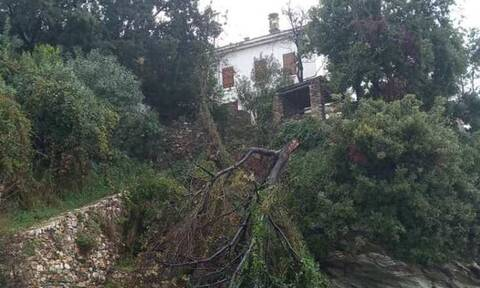 Πνίγηκε το Πήλιο: Το σπάνιο φαινόμενο που προκάλεσε πλημμύρες και καταστροφές (pics - vid)