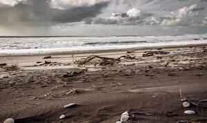 Φρίκη σε παραλία: Ούρλιαζαν με αυτό που ξέβρασε η θάλασσα (pics)