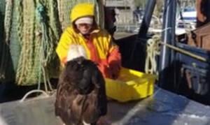 Αετός πάει δίπλα στον ψαρά και αυτό που κάνει είναι… αλητεία! (vid)
