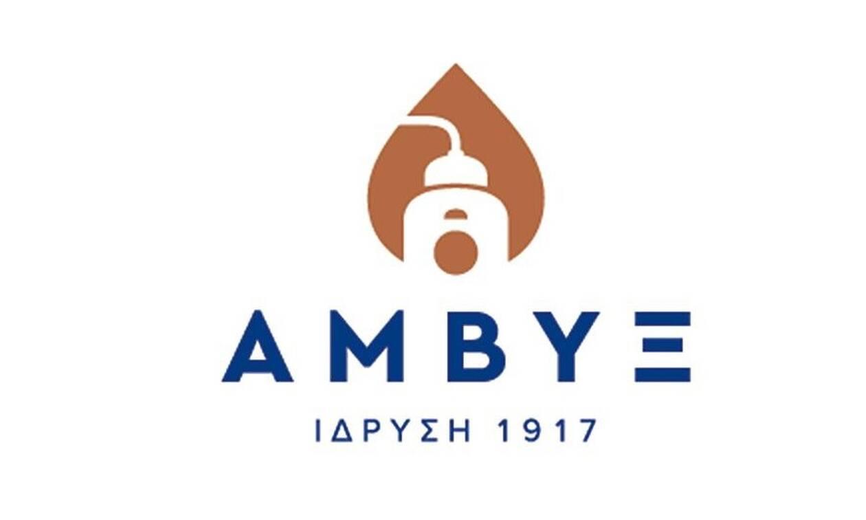 Χρονιά ρεκόρ το 2018 για την Άμβυξ