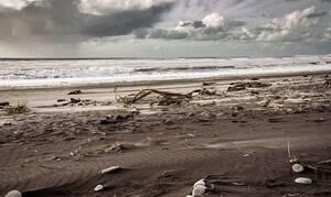 Τρόμος σε παραλία: «Υπάρχει τέρας στη θάλασσα»