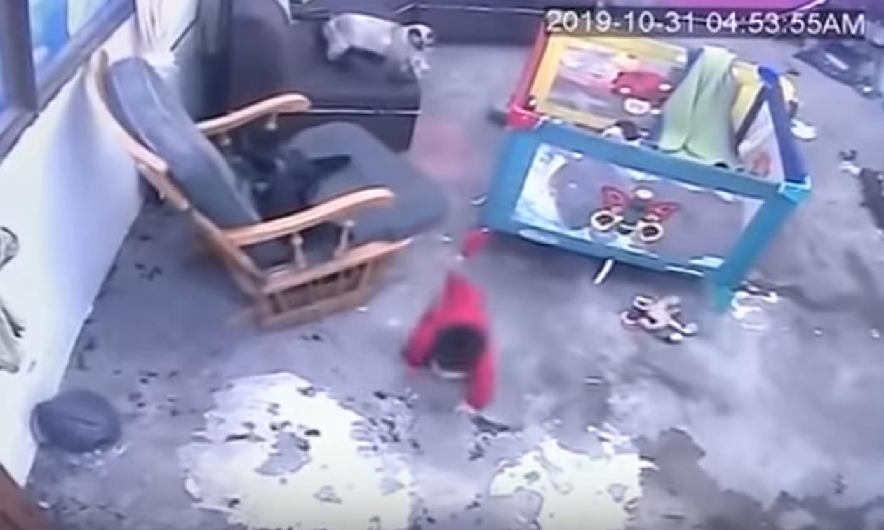 Απίστευτο βίντεο: Γάτα σώζει μωρό πριν πέσει από σκάλα