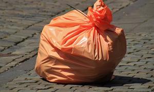 Φρίκη: 19χρονη εγκατέλειψε το μωρό μέσα σε σακούλα - Το έφαγαν τα σκυλιά (pics)