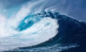 Έβγαλαν από την θάλασσα ένα... δαίμονα - Ούρλιαζαν από τρόμο (pics)
