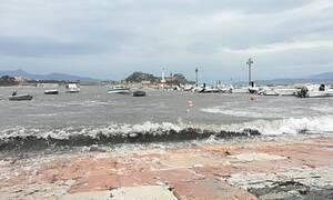 Σαρώνει την Κέρκυρα η «Βικτώρια»: Οι άνεμοι ξερίζωσαν δέντρα (pics)