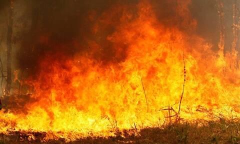 Πυροσβέστες έσβησαν φωτιά σε σπίτι: Το συγκινητικό σημείωμα που άφησαν στον ιδιοκτήτη (Pics)