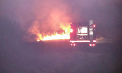 Συναγερμός στην Πυροσβεστική: Φωτιά στον Μαραθώνα (pics)