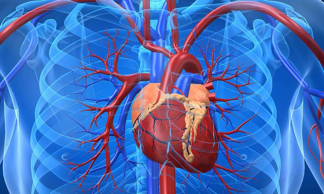 Χοληστερίνη: Αυτές είναι οι τροφές που βοηθούν για καθαρές αρτηρίες...