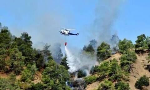 Φωτιά στην Λεμεσό – Στη μάχη και ελικόπτερα