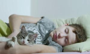 Βίντεο: Όταν η γάτα ξυπνάει το πιτσιρίκι!