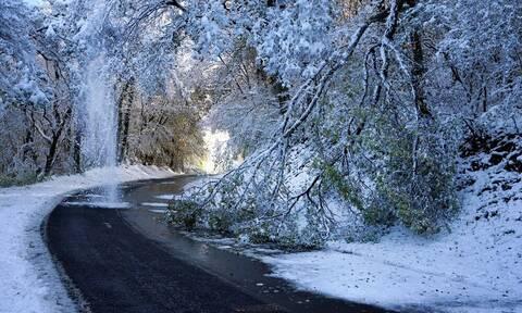 Γαλλία: Προβλήματα από τις σφοδρές χιονοπτώσεις - Ένας νεκρός (pics+vids)