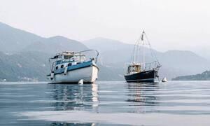 Σύρος: «Πάγωσε» ο ψαράς - Σήκωσε τα δίχτυα και είδε αυτό που… φοβόταν (pics)