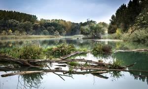 Εκσκαφέας σκάβει σε όχθη ποταμού – Αυτό που έβγαλε «πάγωσε» τους πάντες (pics)