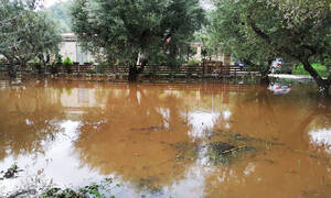 Ζάκυνθος: «Βούλιαξε» από την κακοκαιρία - Εικόνες βιβλικής καταστροφής