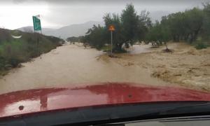Καιρός: Εικόνες Αποκάλυψης στη Μεσσηνία - Χείμαρρος πλημμύρισε τον κάμπο (pics&vid)