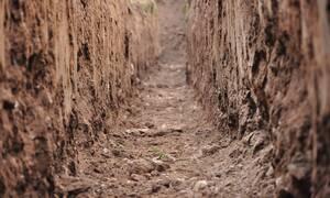 Σπουδαία ανακάλυψη από αρχαιολόγους: Αυτό το μυθικό τέρας ζούσε στη Γη!