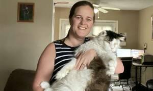 Τρόμος: Νόμιζαν πως η γάτα τους απλά παίζει - Ούρλιαζαν μόλις κατάλαβαν τι συνέβαινε
