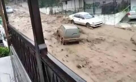 Η κακοκαιρία «σάρωσε» Θάσο - Χαλκιδική: Κινδύνευσαν ζωές, χείμαρροι παρέσυραν ΙΧ, εκκενώθηκαν σπίτια