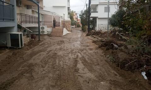 Κακοκαιρία: Εικόνες καταστροφής σε Θάσο και Χαλκιδική - Χείμαροι παρέσυραν αυτοκίνητα