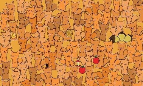 Μπορείτε σίγουρα να βρείτε ένα ποντίκι μεταξύ των σκίουρων; (pics)