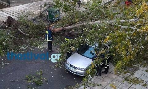 Κακοκαιρία «Γηρυόνης»: Προβλήματα στη Θεσσαλονίκη - Κλειστά σχολεία σε Πιερία και Χαλκιδική