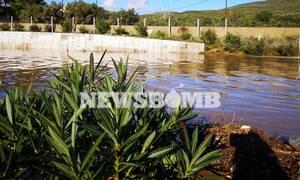 Κακοκαιρία: Γιατί «πνίγηκε» η Κινέτα; Μάχη με το χρόνο και τη λάσπη – Ζημιές σε 300 σπίτια