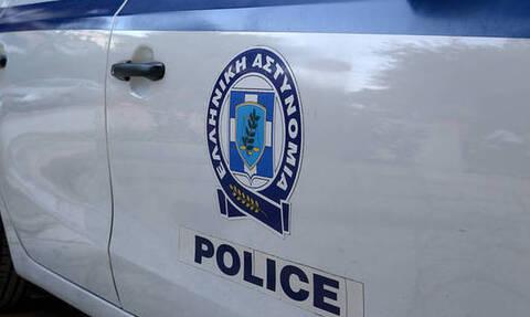 Μενίδι: Έβαλε πίτμπουλ να δαγκώσει αστυνομικούς για να γλιτώσουν τη σύλληψη συγγενείς του