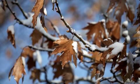 Καιρός - Προειδοποίηση Καλλιάνου: Έρχεται χειμώνας για... 30 ώρες - Πού θα χιονίσει