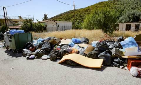 Ζάκυνθος: Σταμάτησε η αποκομιδή των σκουπιδιών - Σε «χωματερή» μετατρέπεται ξανά το νησί