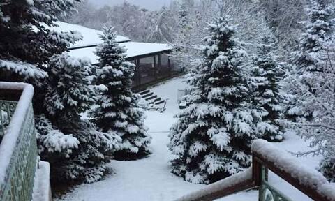 Καιρός: Ο Χειμώνας είναι εδώ - Κρύο, βροχές και χιόνια - Δείτε LIVE πού χιονίζει (pics+vids)