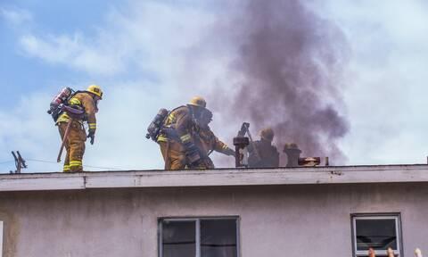 Σκύλος έβαλε φωτιά σε σπίτι - Δεν φαντάζεστε με ποιον τρόπο! (pics)