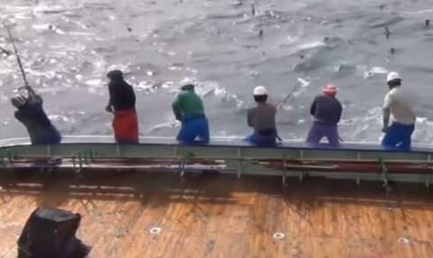 Απίστευτες ψαριές... Θα μείνετε με το στόμα ανοικτό με τις ψαρούκλες που βγάζουν... (video)