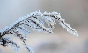 Χριστούγεννα και πρωτοχρονιά 2019: Τι λένε τα μερομήνια για τον καιρό