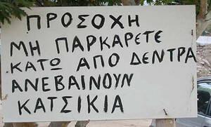Δεν θα σου μείνει αμυγδαλή: Οι πιο αστείες πινακίδες που θα δεις σε ελληνικά χωράφια!