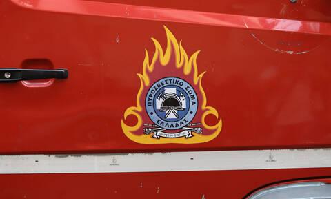 Πανικός στην Εθνική Οδό Αθηνών - Λαμίας: Αυτοκίνητο τυλίχτηκε στις φλόγες