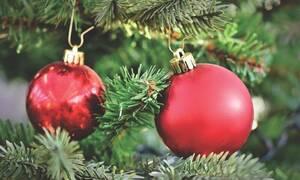 Χριστούγεννα: Έχετε πραγματικό δέντρο στο σαλόνι σας; - Μεγάλη προσοχή, κινδυνεύετε!